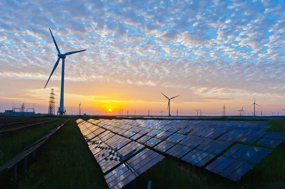 Sapere Software | Bespoke Software Solutions | Wind turbines and solar panels